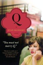 Q_a_novel