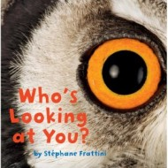 Who's Looking at You? {Review and Giveaway}