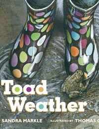 Thumbnail image for Toad Weather