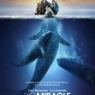 Big Miracle: Books on Screen (Saving the Whales)
