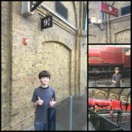 Visiting Hogwarts and Daigon Alley