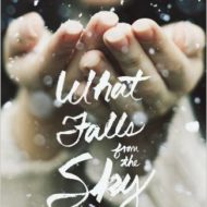 What Falls From the Sky, a Five-Star Read