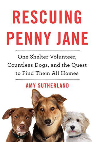 rescuing penny jane