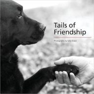 Tails of Friendship